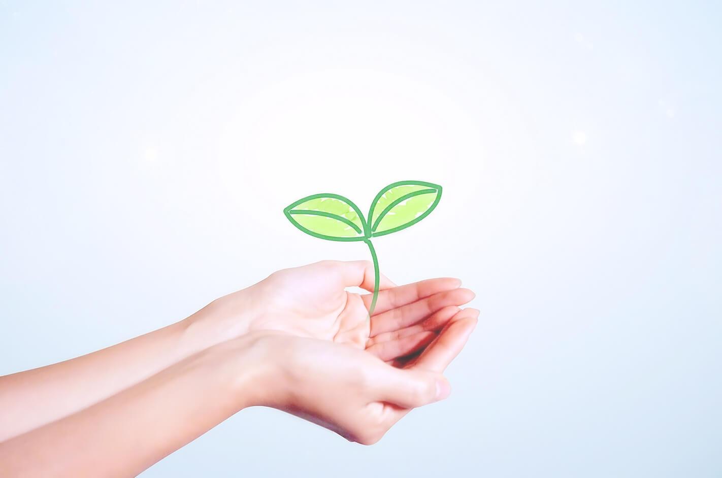 エネルギーを育てる手
